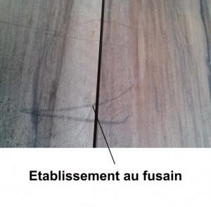 etablissements_au_fusain