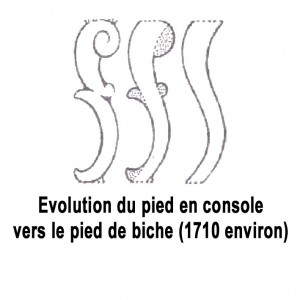 evolution_du_pied_de_biche